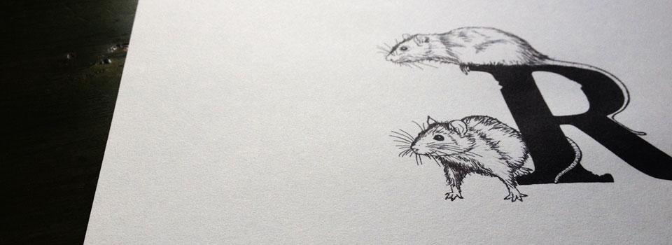 rats_slider